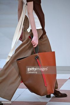 21859b48dab Accessories bag detail on the runway at the Celine Autumn Winter 2015  fashion show during Paris