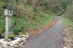 © ORF/Aglassinger Sidewalk, Community, Woodland Forest, Walkways, Pavement, Curb Appeal