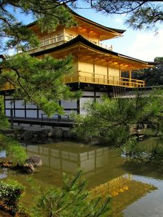 Kinkaku-ji (Golden Temple), Kyoto, Japan. Probably the most amazing temple I've visited.
