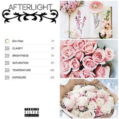 AFTERLIGHT (requested @peaceisinsideme ) - bright - good for flowers and plants…