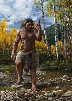 Harbin, Human Family Tree, Phylogenetic Tree, Human Fossils, Av Receiver, Human Evolution, Evolution Science, Human Head, History Museum