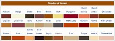 shades of brown eyes   What color are my eyes exactly? - Yahoo! Answers