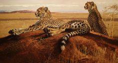 Bob Kuhn, Cheetahs on a Termite Hill, acrylic on masonite, 22 x 40 in, Sold: $204,750