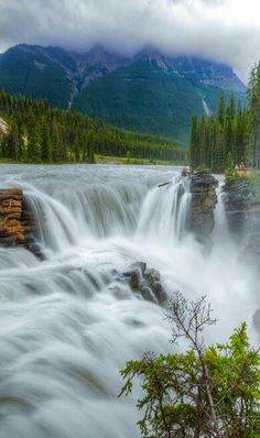 Beautiful waterfall Beautiful Waterfalls, Beautiful Landscapes, Jasper National Park, National Parks, Quebec, Vancouver, Banff Canada, Naturally Beautiful, Nature Photography