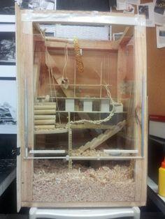 hamster cage builder lvl 36