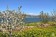 Spring in #Qaroun lake <3 By Hiam Hazime  #Lebanon