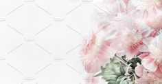 Pastel pink peonies flowers on white by VICUSCHKA on @creativemarket