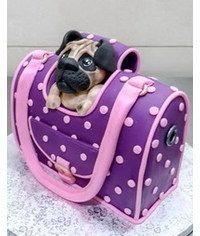 photo  Dog Bag Cake tutorial