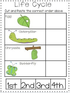 life cycle Kindergarten Science, Elementary Science, Science Classroom, Science Fair Projects, Science Lessons, Science Activities, Teaching Themes, Teaching Schools, Pre K Schools