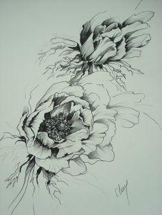 """http://chalang.wordpress.com .""""les anemones""""drawing by Chantal Lang"""