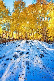 a little bit of Fall, a little bit of winter...nextot