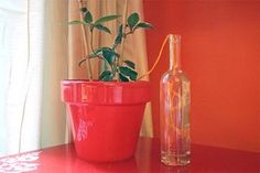 5 Ways to Automatically Water Your Plants When You're Gone - - Keep indoor plants watered while away on vacation with an automatic plant watering system. DIY one of these 5 self-watering systems next time you travel. Auto Watering System, Garden Watering System, Automatic Watering System, Self Watering Planter, Water Flowers, Water Plants, Outdoor Plants, Outdoor Gardens, Indoor Garden