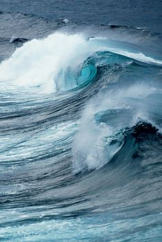 The waves.