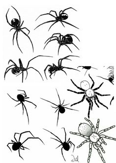 Tattoo Sketches, Tattoo Drawings, Body Art Tattoos, Hand Tattoos, Small Tattoos, Spider Drawing, Spider Art, Spider Web Tattoo, Spooky Tattoos