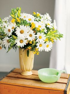 Amazing Daisies Leucanthemum is a very popular perennial. Combine it with Sunny Boulevard Hypericum and some variegated sedum branches, and you have a work of art to enjoy in your home.