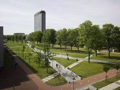 The Delft University of Technology (TU Delft), aimed in to transform the busy and broad Mekel Road, which splits the campus in half, into a spectacular park