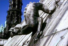 Vouivre à bonnet d'âne, toiture cathédrale Notre-dame de Paris