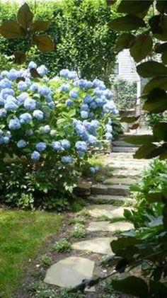 Pathways In Gardens welcoming garden path | garden down the path | pinterest | garden