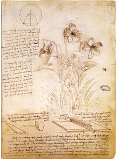 Da Vinci - the very epitome of the renaissance man; not because he lived during the renaissance period, but because he combined science with art - he believed in merging the left and right hemispheres of the brain - combining logic and science with art and vision.