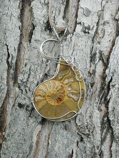 Ammonite necklace.. wire wrapped fossil pendant in alpaca silver..
