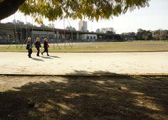 Tres señoras de edad avanzada concurren a la pista para mantenerse sanas y fuertes.