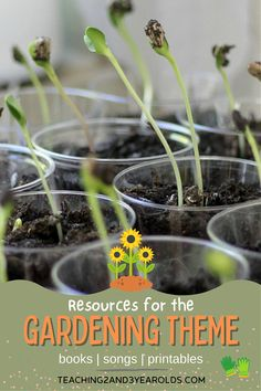 Get ready to plan with these toddler and preschool gardening theme resources! This collection includes activities, songs, books and printables that we will be using in our toddler and preschool classroom this year. #toddlers #preschool #gardening #theme #activities #resources #printables #books #teaching2and3yearolds Preschool Garden, Preschool Classroom, 3 Year Olds, Pre School, Teaching, Activities, How To Plan, Books, Kids