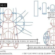 타코작가さん(@taco1704) • Instagram写真と動画 Anatomy Study, Body Anatomy, Human Anatomy, Drawing Techniques, Drawing Tips, Body Tutorial, Art Tutorials, Character Design, Arms