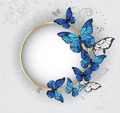 Blue Butterfly Discover Round gold banner with blue butterflies morpho on gray textural. - Millions of Creative Stock Photos Vectors Videos and Music Files For Your Inspiration and Projects. Blue Butterfly Wallpaper, Butterfly Background, Flower Background Wallpaper, Butterfly Art, Flower Backgrounds, Background Patterns, Morpho Butterfly, Flower Frame, Flower Art