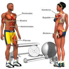 Baja de peso con un entrenamiento de 15 minutos