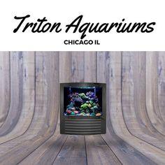 Triton Aquariums #aquarium #homedecor #fishtank #homedesign #luxuryhome #luxury #reef #sps #lps #oceanview #chicago #designideas #diy #reeftank #inspirational #reef #homedesign #wealth #nature #artistic #reefporn #saltwateraquarium #marineaquarium #la #aquascape #aquascaping #sealife #sea #gift #giftidea #coralreef