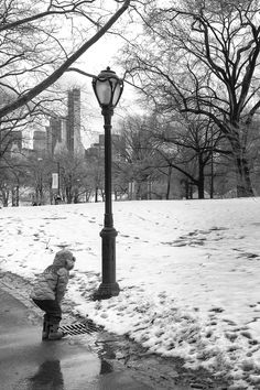 Central Park, New York.    http://500px.com/evildave    ©Davide Boccardo