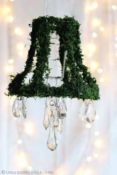 How To Make A Moss Chandelier