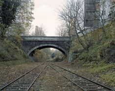 """10 pictures of the abandoned railroad """"Little Belt Railway"""" in Paris"""