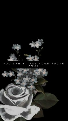 shawn mendes – youth