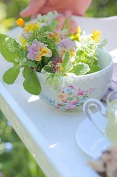 spring printemps