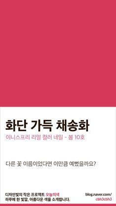 Colour Pallete, Color Combos, Color Schemes, Pantone Colour Palettes, Pantone Color, Korean Colors, Rgb Color Space, Color Vision, Mood Images