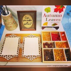 "Fall Leaf Provocation: ""Can You Make a Pattern?"" (from Inquiry Spaces & Wondering Places)"