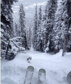 Vail, CO Travel Guide on a Budget –