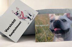 products we love Fiffibene Hunde Produkte