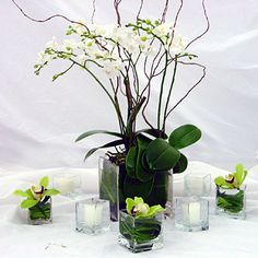 candles and orchids