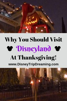 Do you love Christmastime at Disneyland but hate the crowds? Learn why I've been going to Disneyland at Thanksgiving time for years and what keeps me coming back! Disneyland Birthday, Disneyland Vacation, Disneyland California, Disney Trips, Cruise Vacation, Disney Cruise, Walt Disney, Disneyland Thanksgiving, Disneyland Christmas