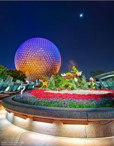 Spaceship Earth topiaries, I simply Love this Disney World picture...