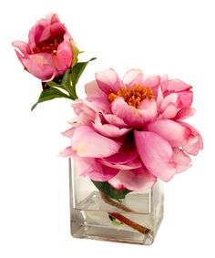 Look at this Pink Peonies in Glass Vase on #zulily today!
