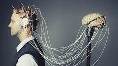 #marketing y Neuroestética: cómo la neurociencia cambia el diseño de los productos