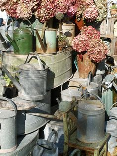 Pile of old watering cans