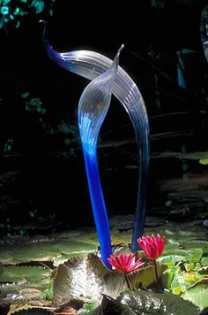 Dale Chihuly of blue heron in Nashville Blown Glass Art, Art Of Glass, Glass Artwork, Stained Glass Art, Fused Glass, Dale Chihuly, Blue Heron, Glass Design, Ikebana