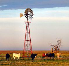 Groothandel ATV – Grootste distributeur van Powersports ATV's - Alles Wat U Moet Weten Over Landbouw Windmill Art, Farm Windmill, Old Windmills, Country Life, Country Roads, Country Living, Unusual Hobbies, Agriculture Photos, Ranch Life