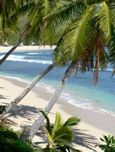 - Waya Island, Fiji -