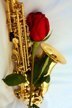 Red Rose Saxophone Music Photo  on Etsy, $10.00