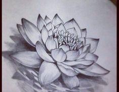 Lotus flower sketch inspirations in 2018 pinterest flower rsultat de recherche dimages pour realistic lotus flower drawings flowertattoodesigns mightylinksfo